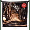 Экран SOK Wallscreen SCPSW-158x158BLCK