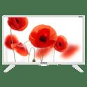 Телевизор Telefunken TF-LED24S75T2