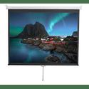 Экран Digis Optimal-D DSOD-4302